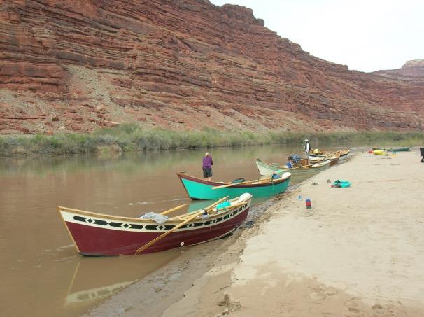 Dory Grand Canyon