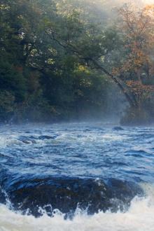 Mill Falls Autumn